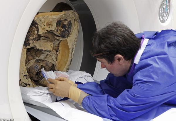 Мумия мамонтенка станет «послом» на Арктическом форуме