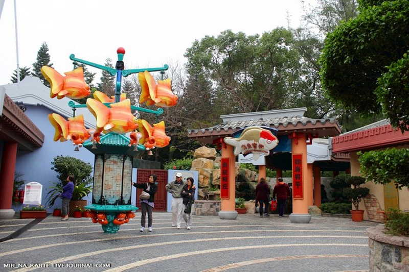 buddhist singles in ocean park Lodging and services for personal self-directed retreats, directed retreats, etc and centers offering a variety of programmed or themed retreats.